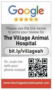 Google my business review card for The Village Animal Hospital